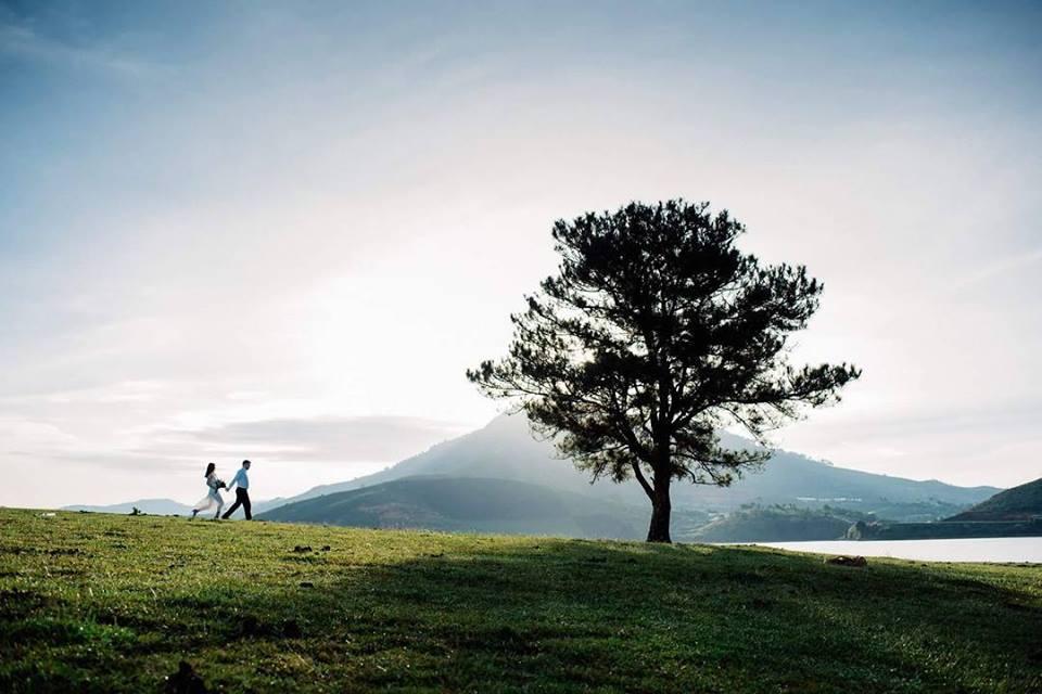 Các địa điểm chụp ảnh cưới Đà Lạt không đến hơi phí! - www.TAICHINH2A.COM